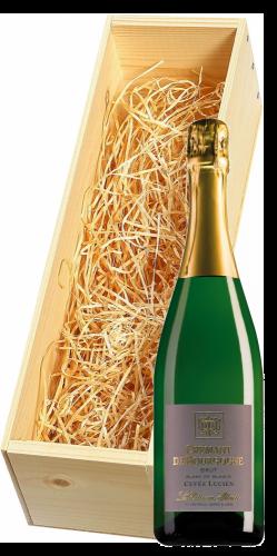 Wijnkist met Vitteaut-Alberti Cremant de Bourgogne Cuvee Lucien Brut