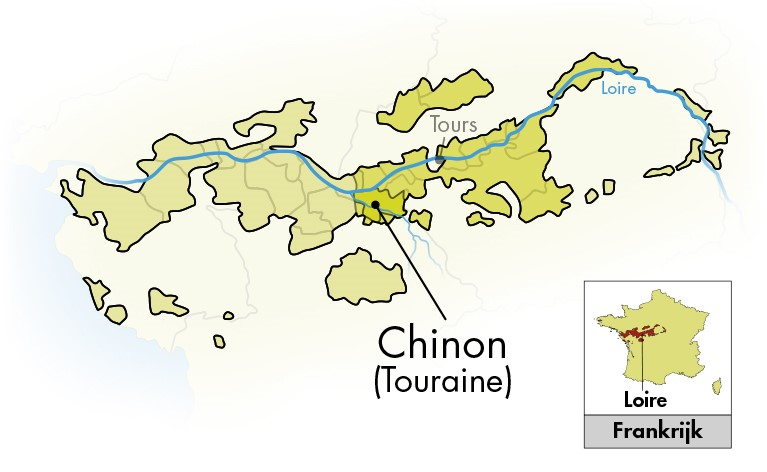 Domaine de Pallus Chinon La Rougerie